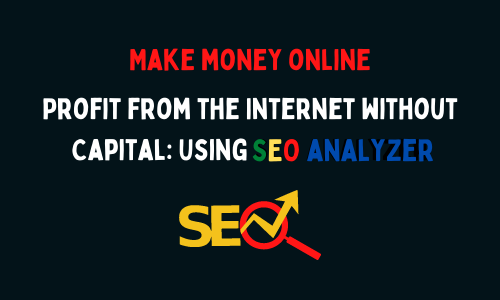 Profit from the Internet without Capital: Using SEO Analyzer
